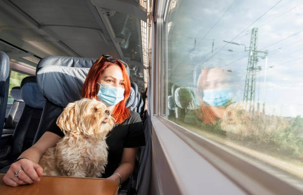 Can Dogs Go On Trains?